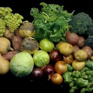 Autumn Season Produce Shares